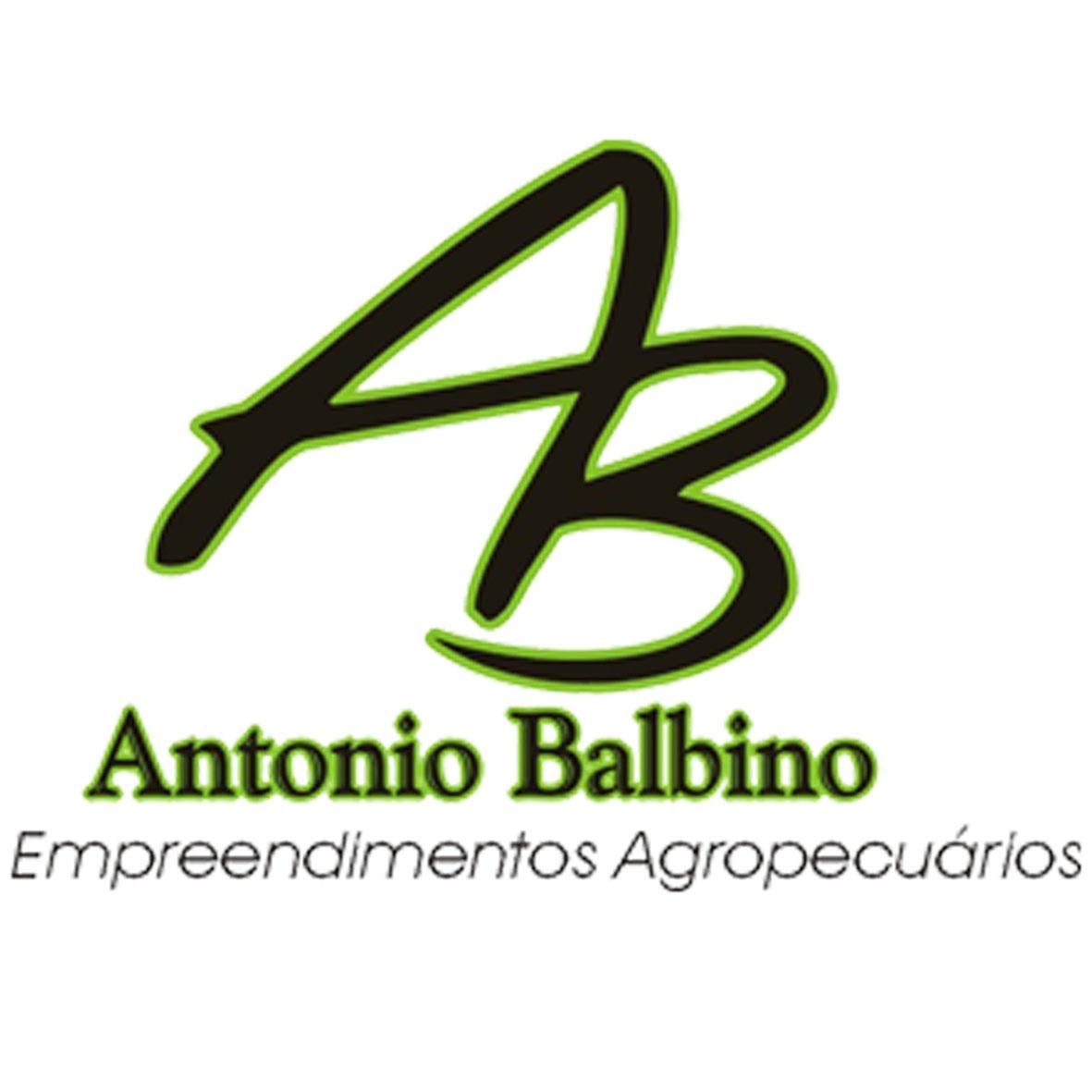 Agropastoril Antônio Balbino