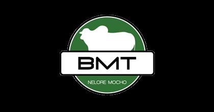 BMT - Nelore Mocho
